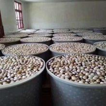 食品级发酵桶生产厂家重庆 食品塑料桶