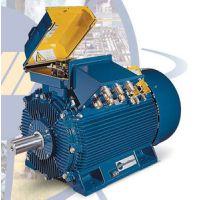 销售代理MarelliMotori低压异步发电机