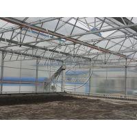 热镀锌钢结构生态温室大棚建造专家—青州瀚洋温室工程