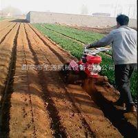高效率果园松土开沟机 大棚蔬菜双向培土机 柴油风冷开沟机 圣通