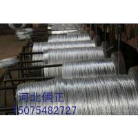 供应新疆阿克苏葡萄架钢丝 大棚钢丝 不生锈热镀锌钢丝