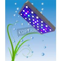 研发智能WIFI水族馆LED植物生长灯 抑制LED灯 动物LED水族灯