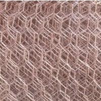 现货供应普锌石笼网 六角网 围羊网