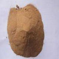 菌体蛋白 味精蛋白粉 含量70%