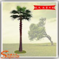 定做高杆蒲葵树 仿真蒲葵树棕榈类植物 玻璃钢假树