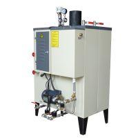 东莞恒森供应火排式蒸汽锅炉 小型工业节能燃气蒸汽锅炉