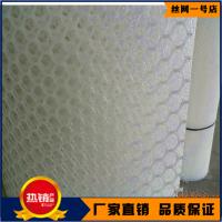广西沙发垫用网厂商 安徽塑料防滑脚垫网价格 小孔育雏网报价