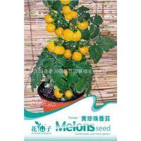 蔬果种子 彩包黄珍珠番茄种子 西红柿 可盆栽 阳台种菜 30粒