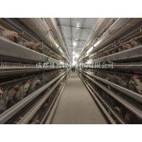 晟兴牧业供应9CLXD-5300型蛋鸡设备