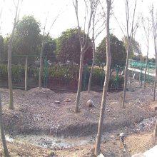勾花护栏网规格 工厂围栏护栏 不锈钢防护栏