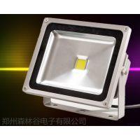 森林谷LED投光灯投射灯高效节能灯