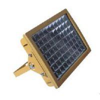 防爆高效节能LED泛光灯 led防爆灯系列100W