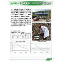 上海哪里供应除臭剂液厂家行业佼佼者13262981149