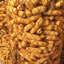 河南收秋专用圈玉米钢板网厂家