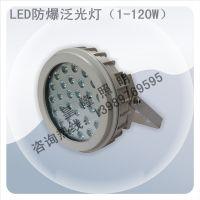 LED防爆灯|LED防爆灯20W|LED防爆泛光灯20W|20WLED防爆灯