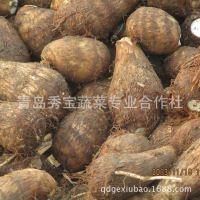 精品推荐 新鲜芋头 特色农产品 绿色有机农产品 诚招代理 【图】