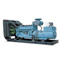 济南燃气发电机,沃尔特新能源,12v190燃气发电机