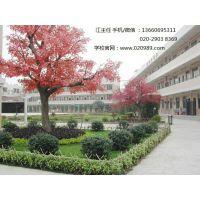 广州免费技工学校 广州公办技工学校