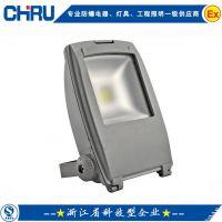 创瑞供应30W白光大功率LED泛光灯|投光灯|背包式室外照明灯|铝压铸
