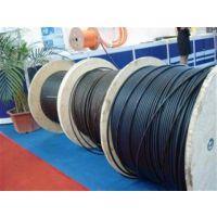 12芯室内多模光缆 12芯光缆的报价 12芯室内单模光缆