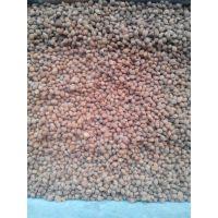 毛桃核价格,桃树种子,毛桃种子价格,每斤200粒左右