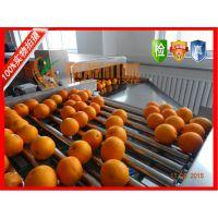 橙子气泡清洗机XY-4000型希源牌全自动高压喷淋气泡清洗机价格