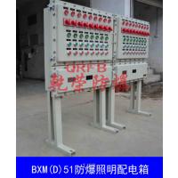 钢板焊接防爆照明箱 钢板非标防爆箱厂家订做 BXM(D)51防爆照明箱价格