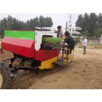 2ZBY-2A型自动化蔬菜移栽机/无需人工投苗/省时省力/田耐尔