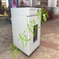 供应金坛良友DHP-9120电热恒温培养箱 微生物恒温箱 医用培养箱