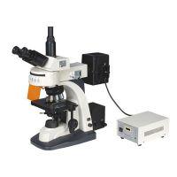 上光 全波段荧光显微镜XYL-580