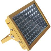 CCd97防爆免维护节能照明灯 防爆节能灯 防爆LED灯