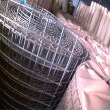 镀锌围栏 镀锌铁丝网 钢丝电焊网