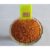 河北生产厂家供应荧光黄色母粒 颜色亮 浓度高 注塑效果好