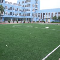 专业人造草坪材料厂家 人造草坪足球场每平米价格 人造草坪施工方案