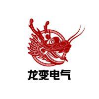 龙变(上海)电气制造有限公司
