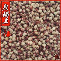 云南小花豆 奶花豆  熊猫豆 五谷杂粮批发销售 有机食品 500克/件
