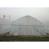 热镀锌钢管温室蔬菜大棚建设以及图片