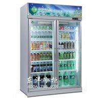 东洋便利店牛奶柜 酸乳制品冷藏柜 韶关冰柜生产商 两门风冷饮料展示柜