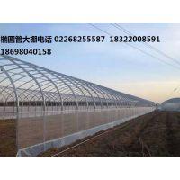 天津4分大棚管生产厂家 4分大棚管生产厂家价格