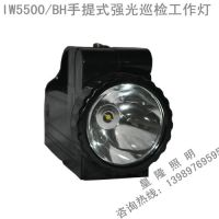 IW5500/BH