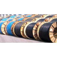 阳谷电缆集团、阳谷电缆、阳谷特种电缆(在线咨询)