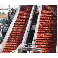 沃迪装备:番茄酱整厂设备/番茄酱生产线