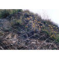 春实供应高强度浸塑边坡防护网