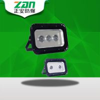 正安防爆 ZAD231 LED透光灯/LED泛光灯