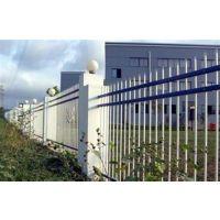 批发锌钢护栏,锌钢护栏,世通铁艺(已认证)