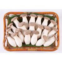 厂家直销小包装杏鲍菇加工设备 即食风味杏鲍菇设备