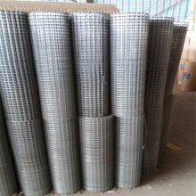 防护电焊网 铁丝网多少钱 电焊网生产厂家