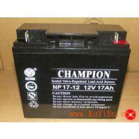 蓄电池2V50AH