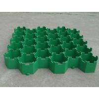 供应越秀植草格厂家现货直销 广东塑料植草格停车场专用