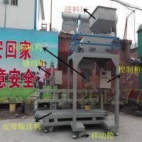 小块煤炭灌包装袋机器清洁煤球定量包装机环保型煤定量秤